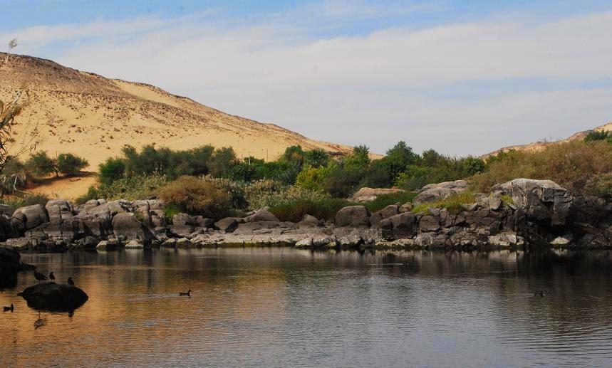 aswan-river