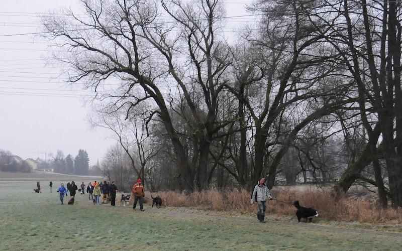 20140101 Neujahrsspaziergang im Waldnaabtal - DSC_9777.JPG