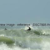 _DSC7895.thumb.jpg