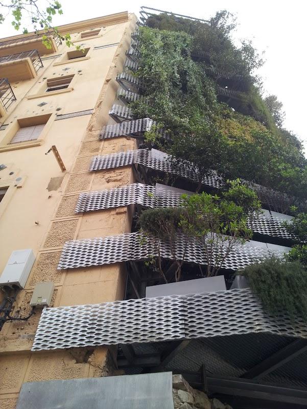 curso formación jardines verticales jardín vertical ecosistema vertical gren wall