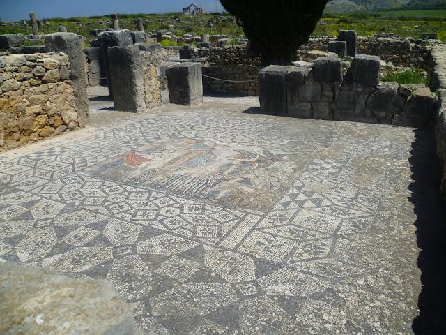 Volubilis mosaic 2