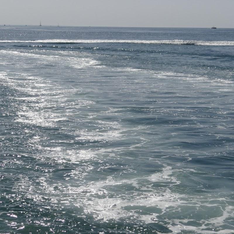 Day_5_Boat_Trip_008.JPG