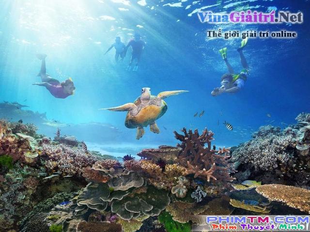 Xem Phim Khám Phá Rạn San Hô Vĩ Đại Với David Attenborough - Bbc: Great Barrier Reef With David Attenborough - phimtm.com - Ảnh 2