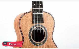 yael ukulele concert