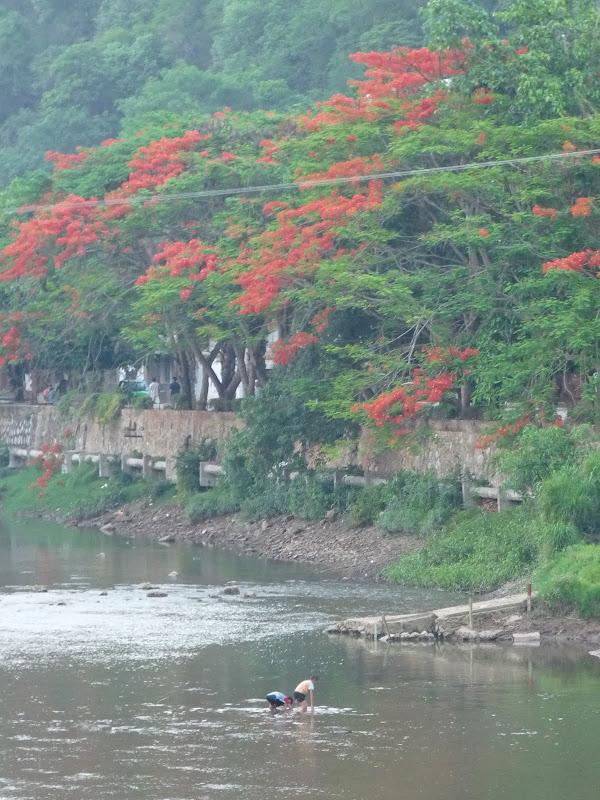 Chine . Yunnan..Galamba, Menglian Album A - Picture%2B449.jpg