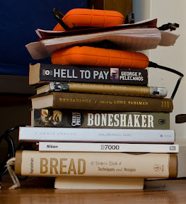 books, boneshaker, not becoming my mother, shipping news, hell to pay, rereadings, vacation, reading