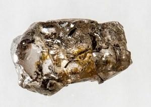 Ανακαλύφθηκε απολίθωμα ενός δισεκατομμυρίου ετών στα Χάιλαντς - Ίσως το πρώτο πολυκύτταρο ζώο που έχει καταγραφεί