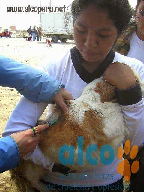 2da asistencia a Pisco por terremoto 2007 (17)