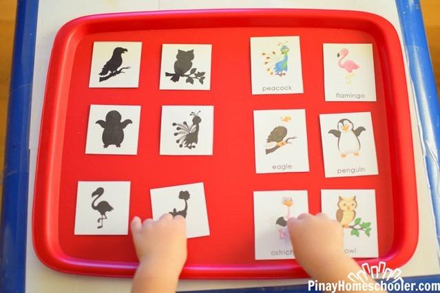 birdthemetotschool-2623