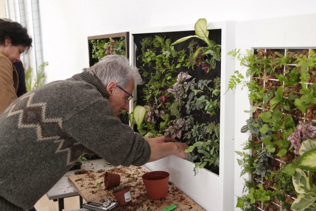 Cursos de jardines verticales alicante forestal for Proyecto jardines verticales
