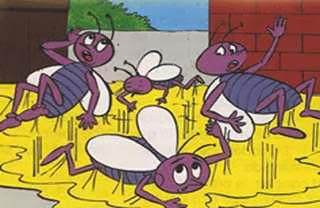 Las moscas y la miel