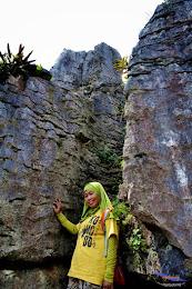 stone garden 18  april 2015 nikon  09