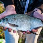 20140612_Fishing_BasivKut_007.jpg