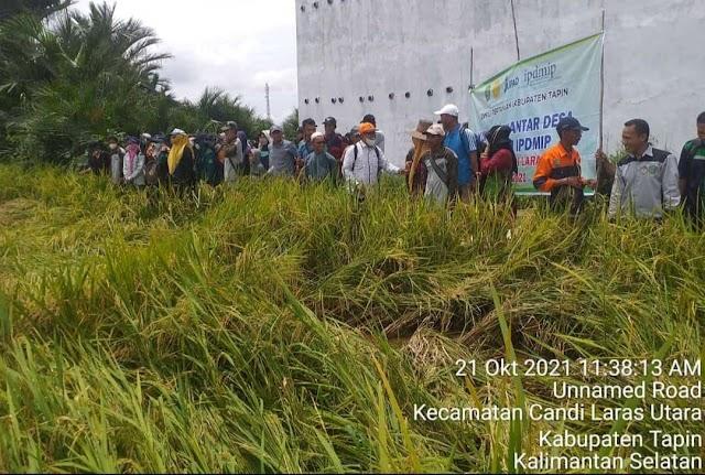 Kunjungan Sekolah Lapangan, Tingkatkan Ilmu dan Pengetahuan para Petani