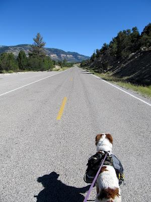 Walking down Utah Highway 29