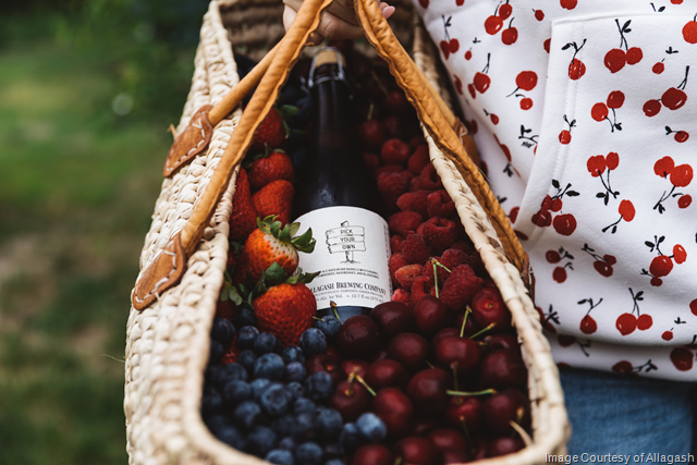 Pick Your Own Reaches Allagash Brewing's Full Distribution for the First Time