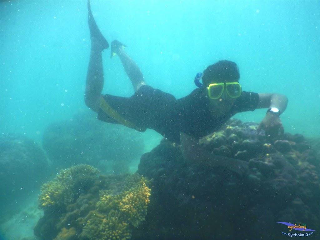pulau pari, 23-24 mei 2015 21