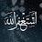 hassan bauomy's profile photo
