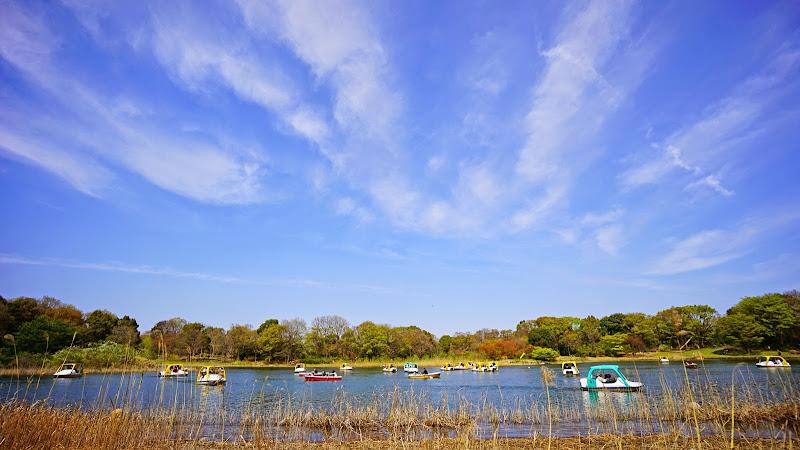 昭和記念公園 写真25