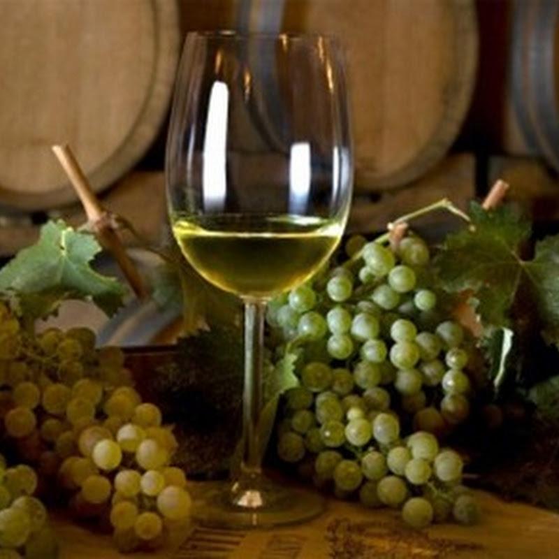 La Sardegna è uno dei paesi che possiede colture vinicole tra le più antiche in Italia.