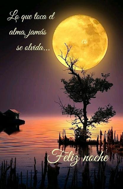 El alma Feliz noche