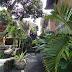 unsere Unterkunft in Ubud