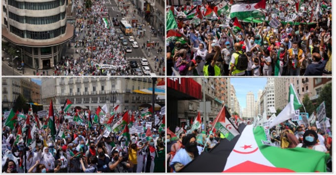 El ''Sáhara libre'' resuena con fuerza en la prensa mundial tras la marcha masiva en Madrid contra la ocupación marroquí.