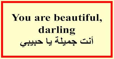 You are beautiful, darling أنت جميلة يا حبيبي