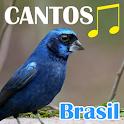 Canto Dos Pássaros Brasil icon