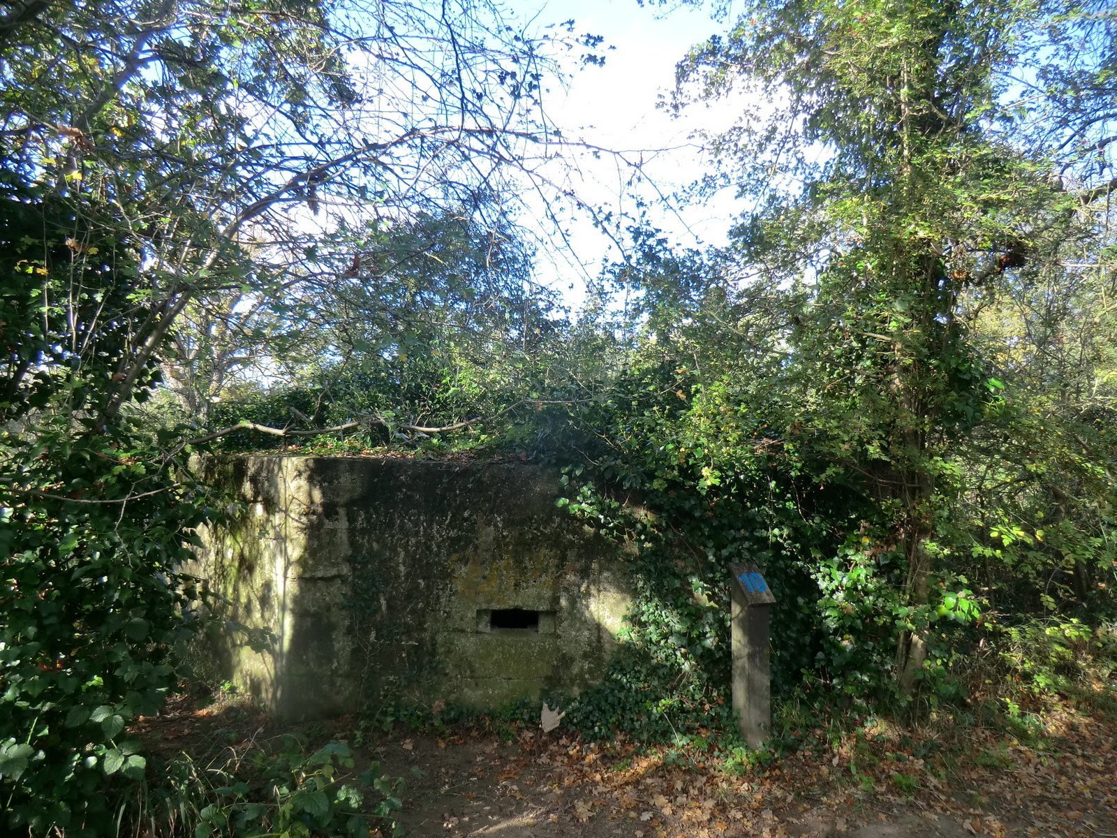 CIMG5433 World War II pillbox, Haysden Country Park