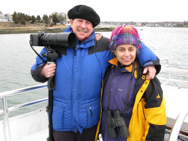 Seal Cruise - seal13.jpg