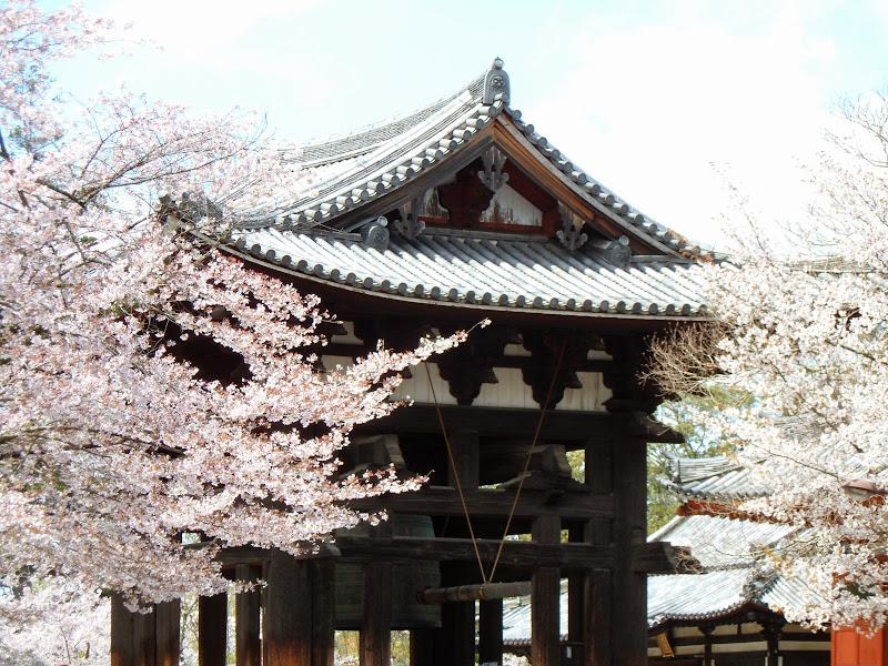 2014 Japan - Dag 8 - tom-SAM_0535-0040.JPG