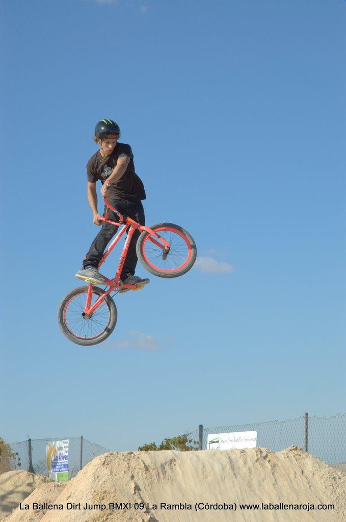 Ballena Dirt Jump BMX 2009 - BMX_09_0026.jpg