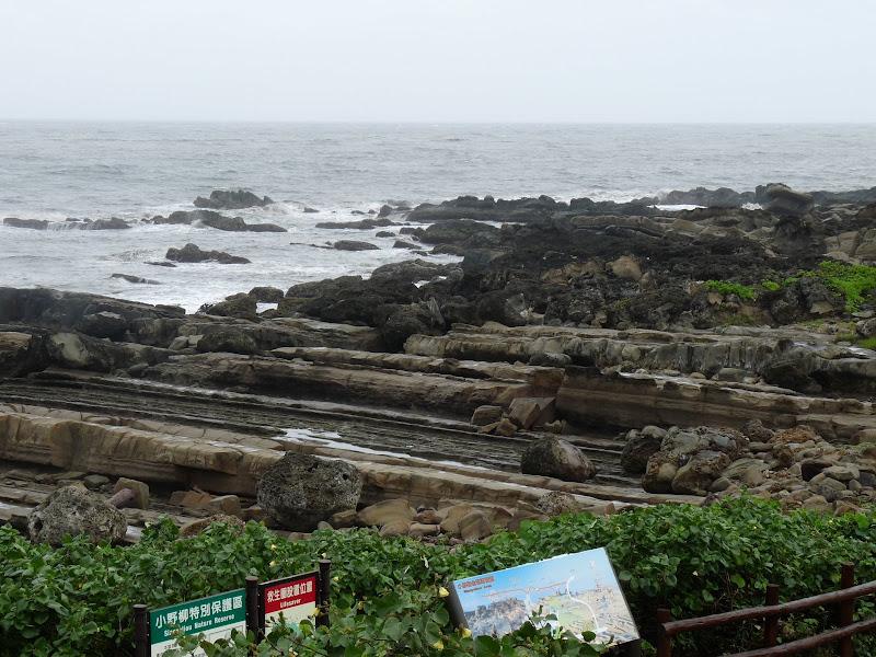 TAIWAN.Taitung - P1110715.JPG