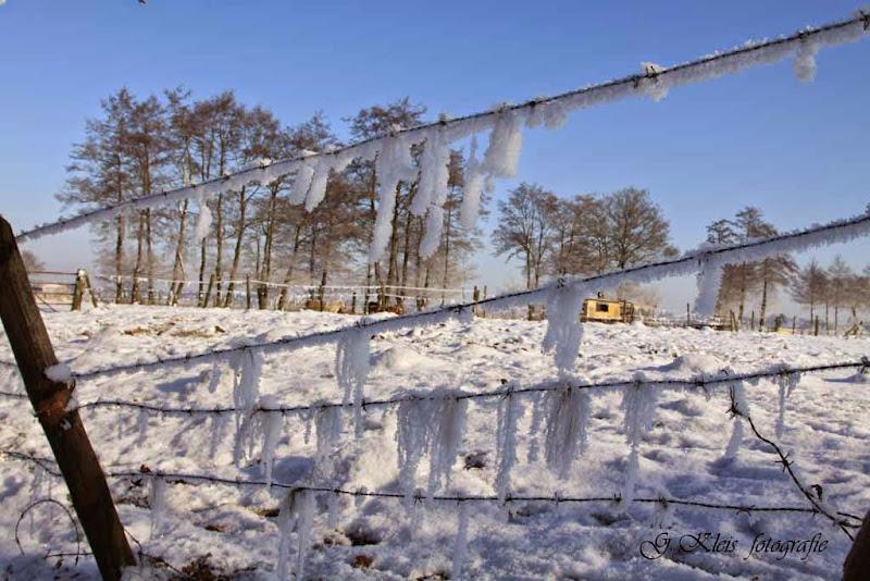 Winter - Winter-036.jpg