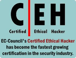 Certified Ethical Hacker (CEH) Training Course at Riphah University