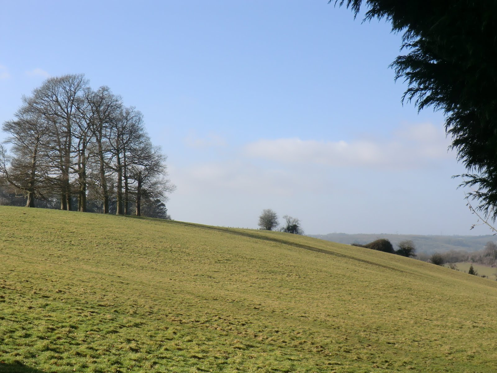 CIMG6654 Rolling hills near Beech Farm