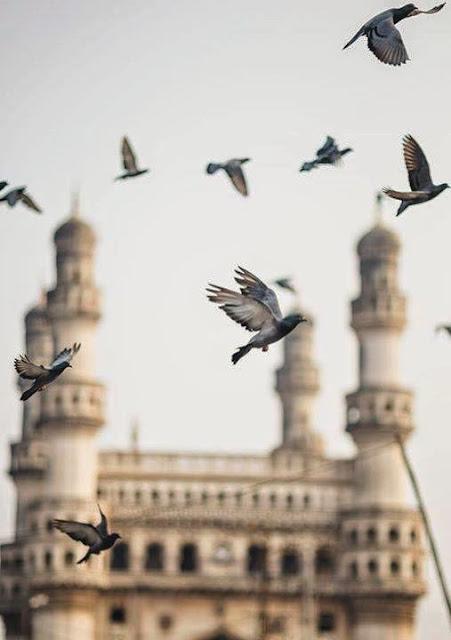 Hyderabad - Rare Pictures - e8dcf5f71fe984d39af313d0f5632764bb32dbdf.jpeg