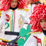 CarnavaldeNavalmoral2015_210.jpg