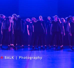 Han Balk Voorster Dansdag 2016-3959.jpg