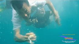 pulau harapan timur jauh 29-30 nov 2014 caklung 06