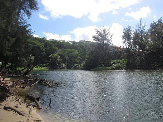 2012 - IMG_9164_Kalihiwai_River.JPG