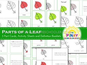 Montessori Inspired Parts of a Leaf Nomenclature Cards and Definition Booklet