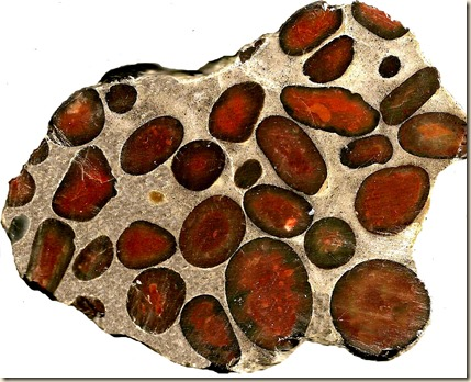Hertfordshire Puddingstone 2. ehgc.org.uk .. red