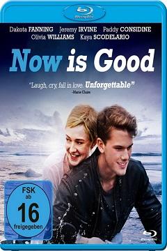 Aşk Şimdi - 2012 BluRay 720p DuaL MKV indir