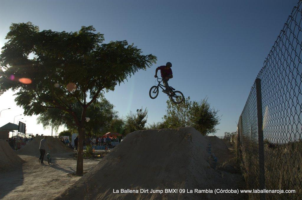 Ballena Dirt Jump BMX 2009 - BMX_09_0100.jpg