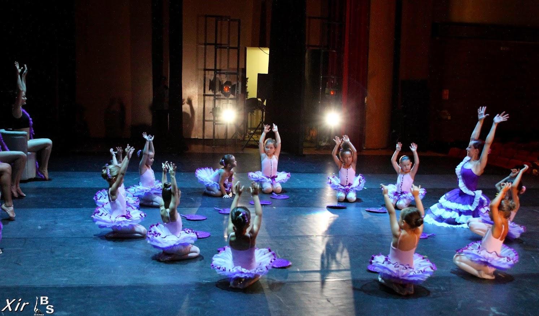 escuela_bsdanza predanza academia_baile festival