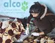 Voluntaria asistiendo a las esterilizadas.