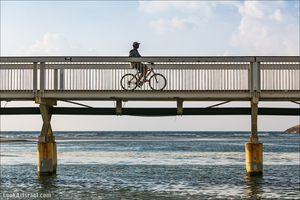Мост Уокопа в Тель Авиве | Wokop Reading Bridge in Tel-Aviv | LookAtIsrael.com - Фото путешествия по Израилю