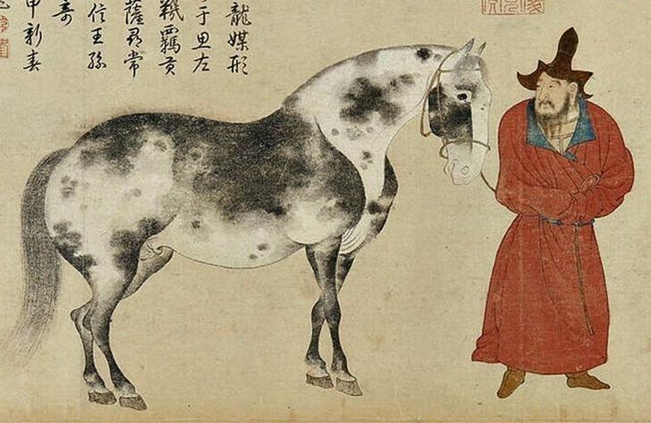 Yam_mongol